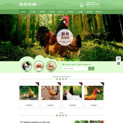 绿色家禽畜牧养殖行业织梦模板(带手机端)